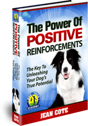 the-power-of-positive-reinforcements