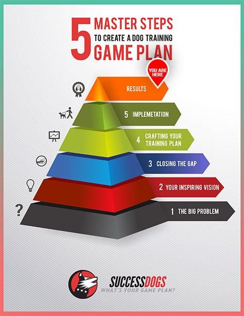 infographic 4_jean