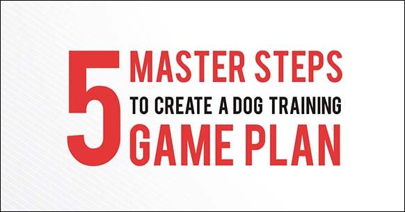 five-master-steps-create-dog-training-game-plan