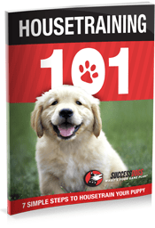 free-housetraining-101-ebook