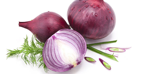 Is onion bad for dogs?