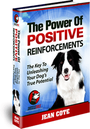 Free Dog Training eBook - The Power of Positive Reinforcements